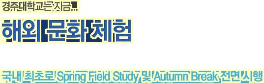 경주대학교는 지금. / 해외 문화 체험 / 국내 최초로 Spring Field Study 및 Autumn Break 전면 시행